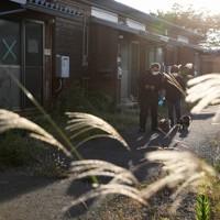 東日本大震災の際に建設された仮設住宅で、愛犬を散歩させる大沼五木さん(左)と妻祐子さん。入居者は少なく、雑草も背を伸ばしていた=福島県本宮市で2020年10月4日、小川昌宏撮影