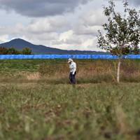 決壊した千曲川沿いを歩く穂保地区の米沢孝典さん(82)。台風の後も千曲川沿いでリンゴや栗を育てている。ほとんどの人が果樹を処分したという津野地区の畑でにわずかに残るリンゴの木を見て「こんな水が来たところでも頑張っている人がまだいるんだな」と話した=長野市津野地区で2020年10月7日午前10時、滝川大貴撮影