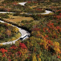 北アルプスと立山連峰の紅葉が見ごろを迎えている。木々が赤や黄に色づき始めた「立山黒部アルペンルート」=富山県立山町で2020年10月16日、本社ヘリから
