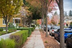 米カリフォルニア州の秋の風景