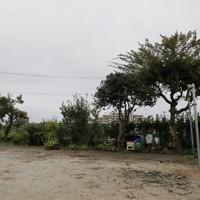 母親を亡くした鈴木良子さん(69)の自宅は今年春ごろに解体された。「この1年は、3、4歳年をとったかのように、心身ともに疲れてしまった。100歳の母は元気だったから、台風がなければ今も元気だったはず」と今も悔やむ気持ちは変わらない=福島県いわき市で2020年10月10日、和田大典撮影