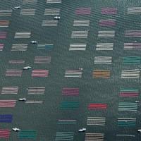 色とりどりのノリ網が張られた有明海=佐賀市沖で2020年10月18日午前9時43分、本社ヘリから矢頭智剛撮影