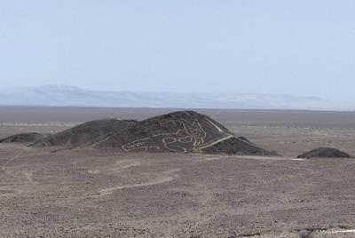 発見されたネコ科動物の地上絵=2020年10月9日、ペルー・ナスカで=ペルー文化省提供・AP