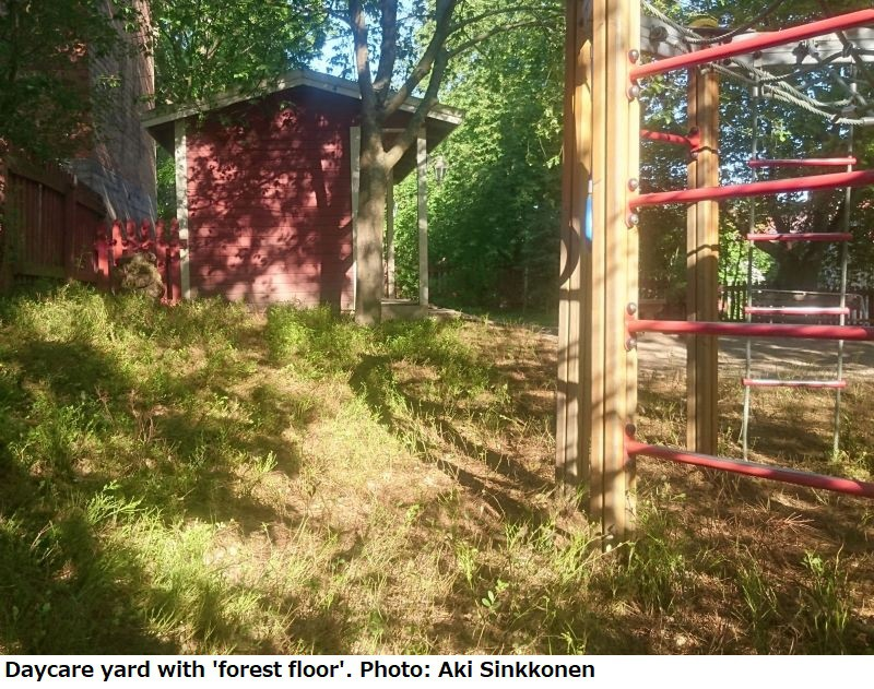 土や植物を配置した園庭=Aki Sinkkonen氏撮影
