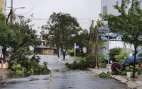Broken tree branches caused by strong winds from Typhoon Molave lie on a deserted street in Da Nang, Vietnam, on Oct. 28, 2020. (Vo Van Dung/VNA via AP)