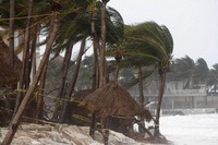 Palm trees are buffeted by the winds of Hurricane Zeta in Playa del Carmen, Mexico, on Oct. 27, 2020.  (AP Photo/Tomas Stargardter)