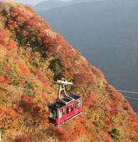 Autumn colors cover Mount Unzen beneath a gondola leading to Myoken peak in the city of Unzen, Nagasaki Prefecture, on Oct. 29, 2020. (Mainichi/Satoshi Kondo)