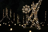 Bamboo lanterns are seen at the