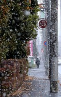 The first snow of the season is seen on the streets of Sapporo in the city's Chuo Ward, on the morning of Nov. 4, 2020. (Mainichi/Taichi Kaizuka)