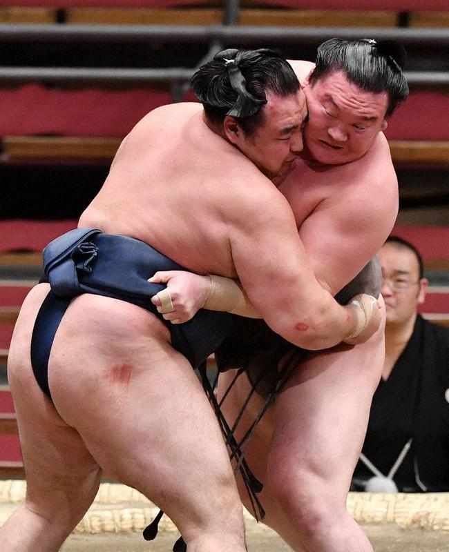 取り組み 大相撲 明日 の 明日の取組