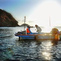 朝日を浴びながらアワビをとる漁師たち=岩手県釜石市で2011年11月17日午前7時33分、小松雄介撮影