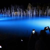 ライトアップが始まり、浮かび上がった青い池=北海道美瑛町で2020年11月1日午後5時10分、貝塚太一撮影