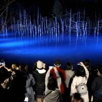 ライトアップが始まり、浮かび上がった青い池。今年から自撮り用に観光客に一時ライトが当たる演出も=北海道美瑛町で2020年11月1日午後5時、貝塚太一撮影