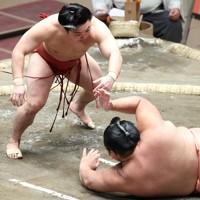 炎鵬(左)が千代大龍を突き落としで降す=東京・両国国技館で2020年11月17日、宮武祐希撮影