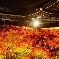 ライトアップされた東福寺の紅葉=京都市東山区で2020年11月18日午後5時39分、川平愛撮影