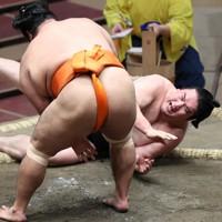 志摩ノ海(左)が下手出し投げで竜電を破る=東京・両国国技館で2020年11月19日、宮武祐希撮影