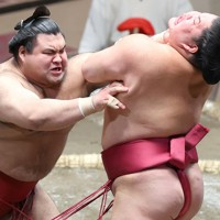 大栄翔(右)をはたき込みで降した高安=東京・両国国技館で2020年11月19日、宮武祐希撮影