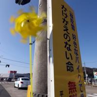 「世界道路交通犠牲者の日」に合わせて、楠野祇晴さんが次男敦司さんが犠牲となった事故現場に設置した黄色い風車=栃木市で2020年11月15日、小川昌宏撮影
