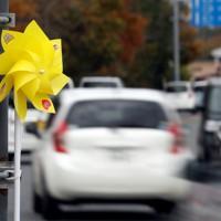 「世界道路交通犠牲者の日」に合わせて、県警が死亡事故現場に設置した黄色い風車。幹線道路沿いで交通量は多い=秋田県潟上市で2020年11月11日、小川昌宏撮影