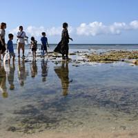 干潮時に海面に出るイノー(浅瀬)で、シャコやカニを探して遊ぶ家族連れ=沖縄県浦添市で2020年11月、徳野仁子撮影
