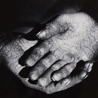 埼玉・秩父地方の農村を撮り続けた南良和氏の作品「21歳の嫁の手」(1963年)=ピアソン氏の収集品から、入江泰吉記念奈良市写真美術館提供