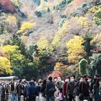 紅葉が見ごろを迎えた京都の嵐山を訪れ、渡月橋で列を作る観光客=京都市右京区で2020年11月21日午前11時21分、小出洋平撮影