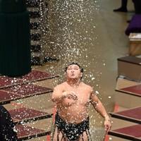 取り組み前に塩をまく照強=東京・両国国技館で2020年11月21日、大西岳彦撮影