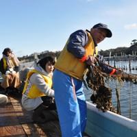 漁船に分乗して養殖場のカキ棚を見学する参加者たち=宮城県塩釜市の浦戸野々島で2018年11月23日午前10時37分、渡辺豊撮影