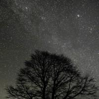 「星の名所」として有名な夏虫山の満天の星=岩手県大船渡市三陸町越喜来で2011年11月26日、竹内紀臣撮影