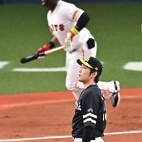 【巨人-ソフトバンク】五回裏巨人1死一塁、ウィーラー(奥)に右越え2点本塁打を打たれ、打球の行方を見つめるソフトバンクの石川=京セラドーム大阪で2020年11月22日、徳野仁子撮影