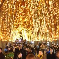 仙台市のケヤキ並木が輝く「SENDAI光のページェント」=仙台市青葉区で2011年12月2日午後6時7分、丸山博撮影