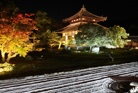Japan Photo Journal: Kyoto temple garden ablaze with color during fall light-up event