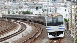 戸塚駅付近を走るE217系