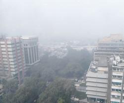 11月初旬にオフィスビル16階から撮影した景色 筆者撮影