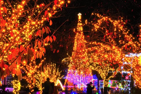 Japan Photo Journal: 1 mil. LEDs light up east Japan city for annual winter event