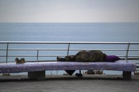 A cat sits next to a homeless woman sleeping on the Mediterranean Sea corniche in Beirut, Lebanon, on July 19, 2020. (AP Photo/Hassan Ammar)