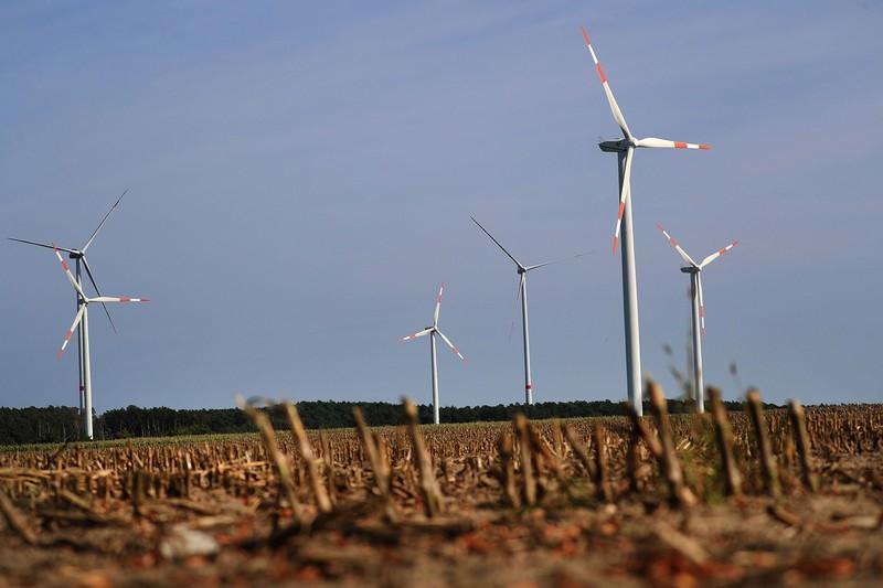 ドイツ・ブランデンブルク州に設置された風力発電施設。緑の党は再生可能エネルギーの拡充を訴える(Bloomberg)