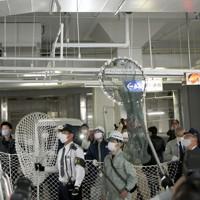 市役所の地下駐車場を逃げ回るサル=福岡市中央区で2020年12月3日午後1時13分、須賀川理撮影