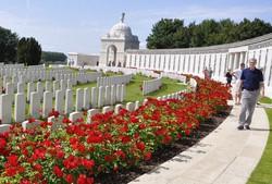 ベルギー西部イーペルの草原に建ち並ぶ戦没者の墓。深紅の花が墓石周辺に咲いていた=2014年6月、篠田航一撮影