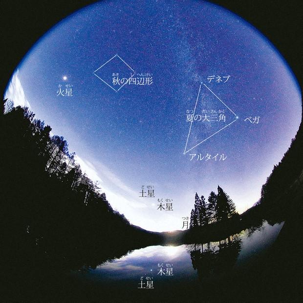 観測 天体