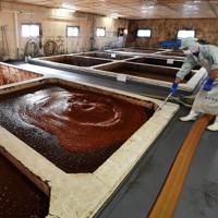 種類ごとに分けて発酵槽にため、定期的にかき混ぜられるもろみ=堺市堺区で2020年12月8日、望月亮一撮影