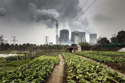 石炭関連企業の社債価格は急落(Bloomberg)
