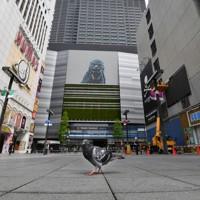 普段の祝日と比べて大幅に人通りの少ない歌舞伎町=東京都新宿区で2020年5月4日午後1時41分、宮間俊樹撮影