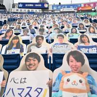【DeNA-広島】無観客試合の横浜スタジアムの客席に並べられたファンの写真パネル=横浜市中区で2020年6月19日、北山夏帆撮影