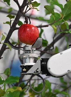 A prototype of a robot that can automatically harvest fruit is seen picking an apple in Tokyo's Chuo Ward on Dec. 23, 2020. (Mainichi/Natsuki Nishi)