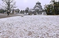 Osaka Castle Park in the city of Osaka's Chuo Ward, is seen covered with a light dusting of snow on Jan. 12, 2021. (Mainichi/Kazuki Yamazaki)