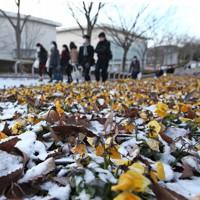 うっすらと雪が積もる中、大学入試センター試験会場に向かう受験生たち=福島市の福島大学で2012年1月14日午前7時46分、武市公孝撮影