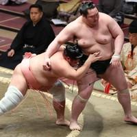 宇良(左)が送り出しで白鷹山を降す=東京・両国国技館で2021年1月12日、宮武祐希撮影