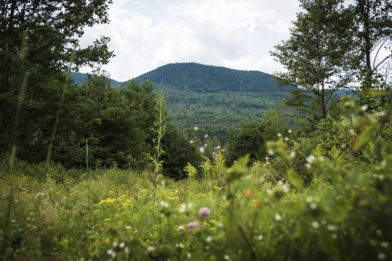 米国の自然の中に忍び込む(Bloomberg)