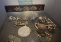 In this Oct. 8, 2015 file photo, the skeletons of sacrificed Spaniards are displayed inside a glass case at the museum of the Zultepec-Tecoaque archeological site in Tlaxcala state, Mexico. (AP Photo/Rebecca Blackwell)
